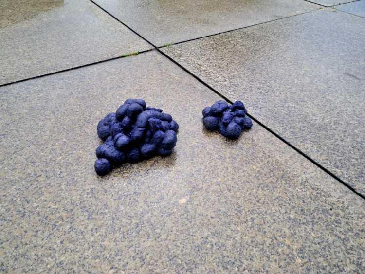 »Blaue Pferdeäpfel«, Martin Gostner: »Der Erker der Blauen Pferde«, Neue Nationalgalerie, Berlin Kulturforum, Foto © Friedhelm Denkeler 2012