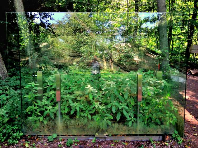 »Selbst im Kleingarten«, Foto © Friedhelm Denkeler 2011