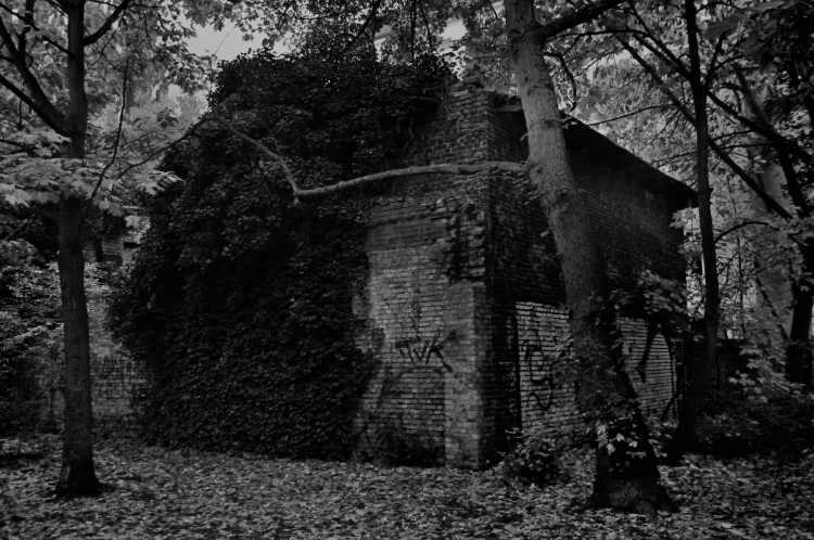 »Adams Haus«, Foto © Friedhelm Denkeler 2013