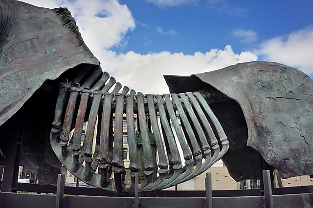 """Gustavo Aceves: """"Lapidarium – Grenzen überwinden"""" (Pariser Platz), Foto © Friedhelm Denkeler 2015"""