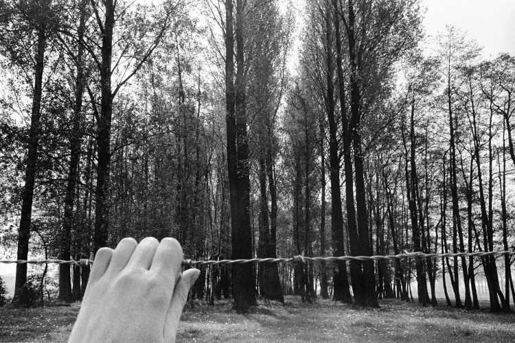 »Stacheldraht«, aus dem Portfolio »Sommer in einer Hand«, Foto © Friedhelm Denkeler 1985
