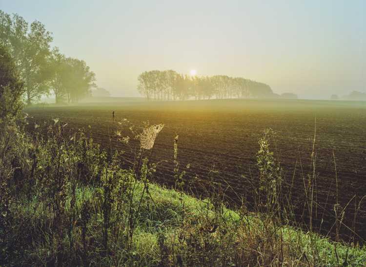»Bei Waldschmidt«, aus der Serie »Mecklenburgische-Schweiz«, Foto © Siebrand Rehberg, 2003