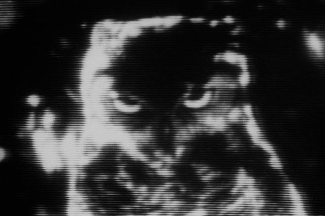 """»Eule im Mondlicht«, aus """"Die Freundin des Teufels"""", aus """"Episoden"""", Foto © Friedhelm Denkeler 1982"""