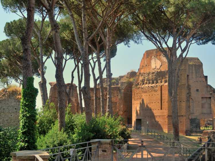 »Wandeln unter Pinien im Forum Romanum«, Foto © Friedhelm Denkeler 2011