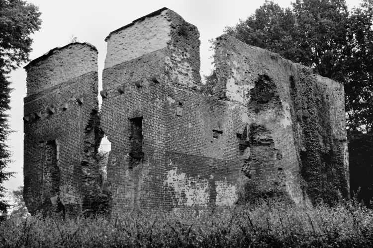 »Burgruine Rahden«, Foto © Friedhelm Denkeler 2012