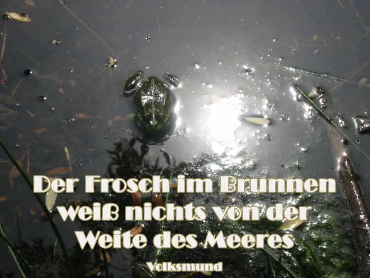 »Der Frosch im Brunnen weiß nichts von der Weite des Meeres«, Foto+Collage © Friedhelm Denkeler 2002