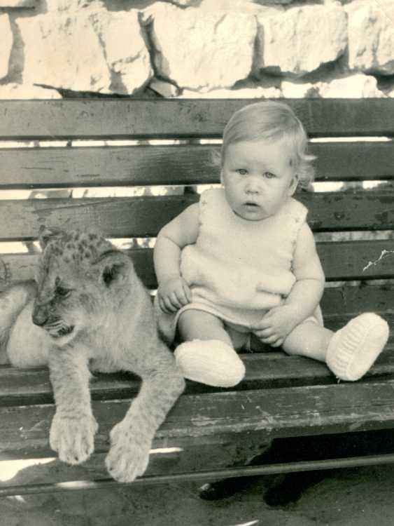 »Sabinchen und der Löwe», 2. August 1961, © Archiv Friedhelm Denkeler