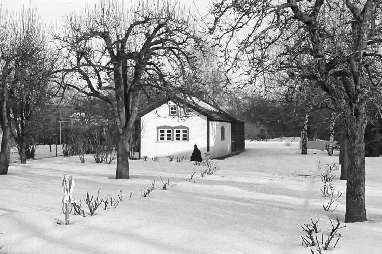 »Stadgang durch die Neuköllner Kleingarten-Anlage«, Foto © Friedhelm Denkeler