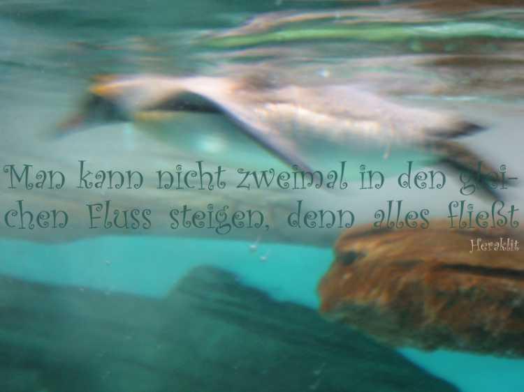 »Man kann nicht zweimal in den gleichen Fluss steigen, denn alles fließt«, Heraklit, Foto/Grafik © Friedhelm Denkeler 2006