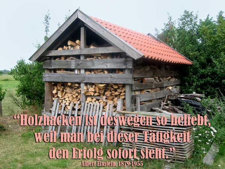 »Holzhacken ist deshalb so beliebt, weil man bei dieser Tätigkeit den Erfolg sofort sieht«, Albert Einstein, Foto © Friedhelm Denkeler 2007