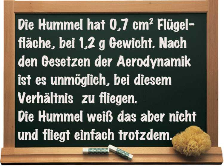 »Die Hummel …«, Grafik © Friedhelm Denkeler 2014