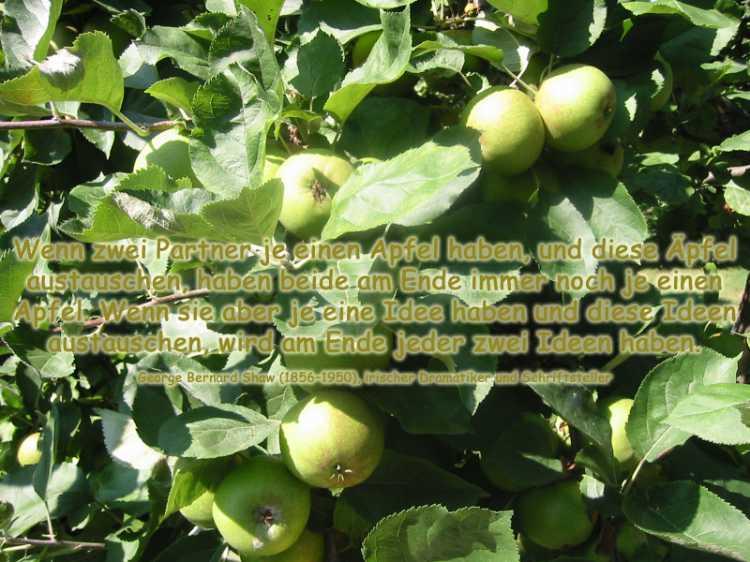 »Wenn zwei Partner je einen Apfel haben …, Foto/Grafik © Friedhelm Denkeler 2003